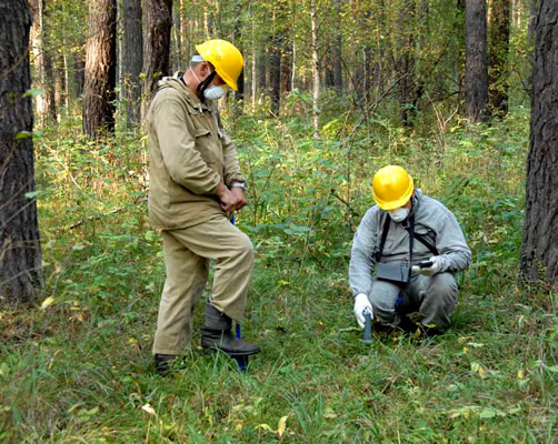 FORESTRY IN CONDITIONS OF MAN-MADE AND RADIOACTIVE CONTAMINATION